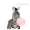 Lovely Zebra Animal Blowing Bubble Canvas Wall Art