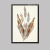 Nordic Golden Brown Feathers Creative Canvas Print