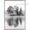 Deep Forest River Design Canvas Print