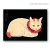 Pale Cat Realistic Animal Picture