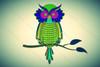Blue Green Owl