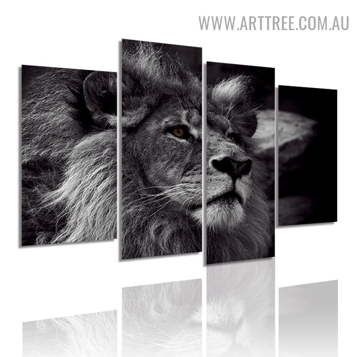 African Wild Cat Lion Animal Modern 5 Piece Large Canvas Wall Art Image Canvas Print for Room Illumination
