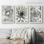 Cactus Botanical Modern Scandinavian Painting Print for Living Room Wall Equipment
