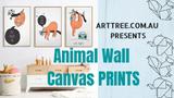 Animal Wall Canvas Prints Video