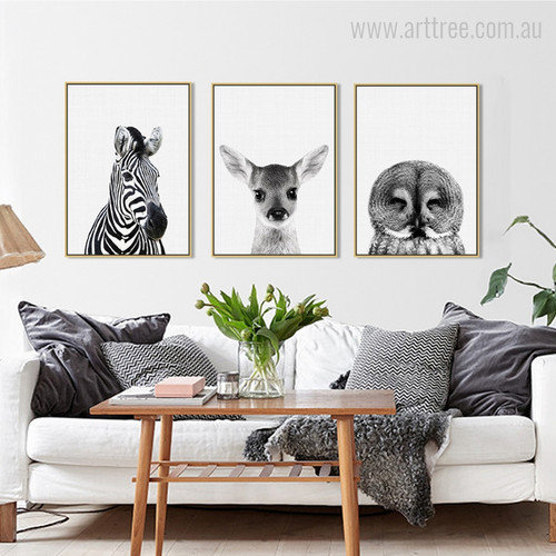 Kawaii Zebra, Fawn, Owl Animal Cute Photo Canvas Prints