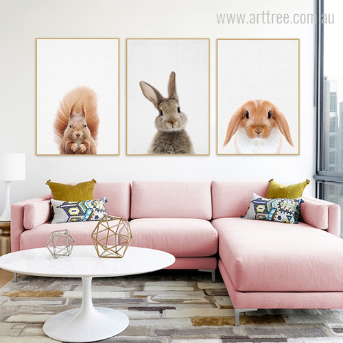 Kawaii Squirrel, Rabbit, Guinea Pig Animal Cute Photo Canvas Print