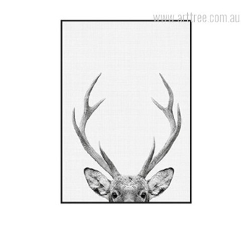 Deer Animal Antler Photo Wall Art