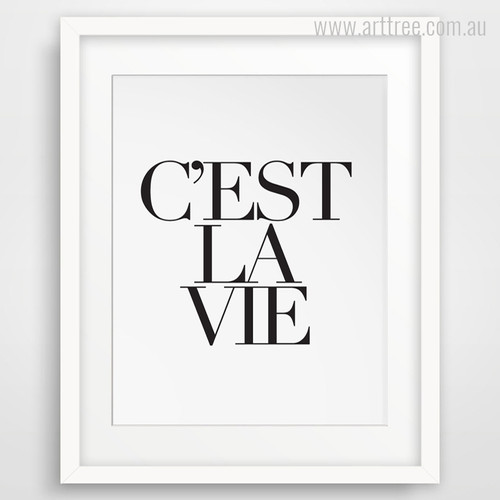 C'est La Vie French Life Quote Wall Art
