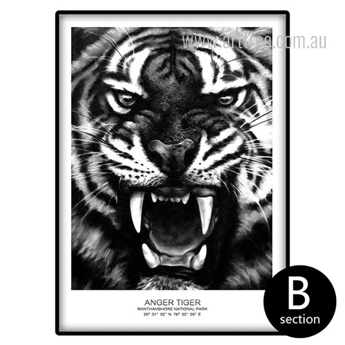 Ranthambhore National Park Anger Tiger Animal Canvas Print