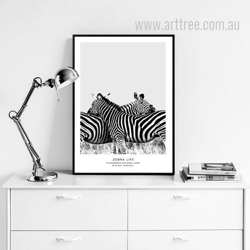 Black and White Pilanesberg National Park Zebra Life Animal Art
