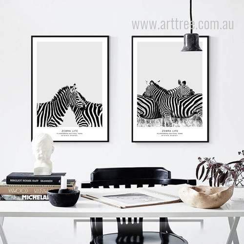 Pilanesberg National Park  Zebra Life Animal Art Set