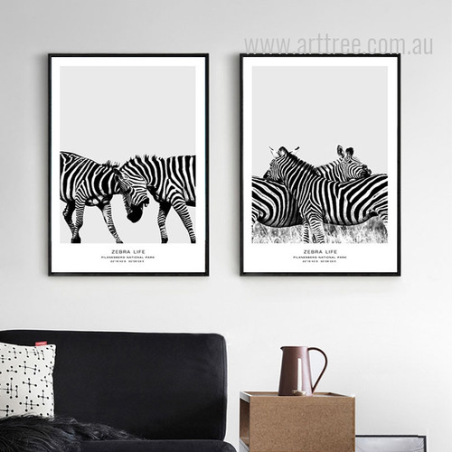 Black and White National Park Zebra Life Animal Art Set