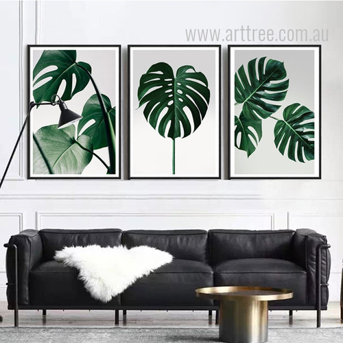 Monstera Leaf Design Green Botanical Prints