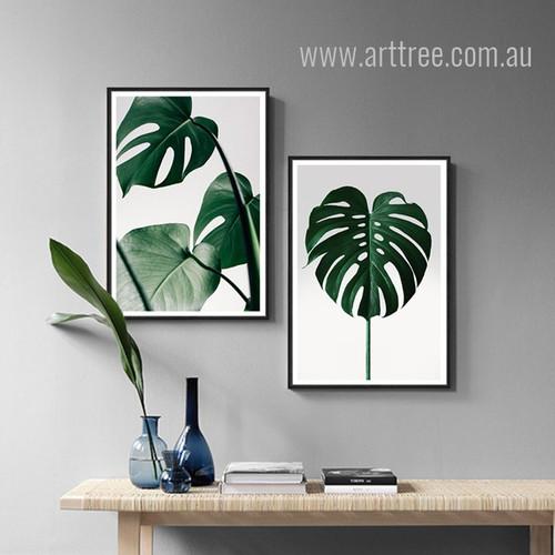 Monstera Leaf Art Set