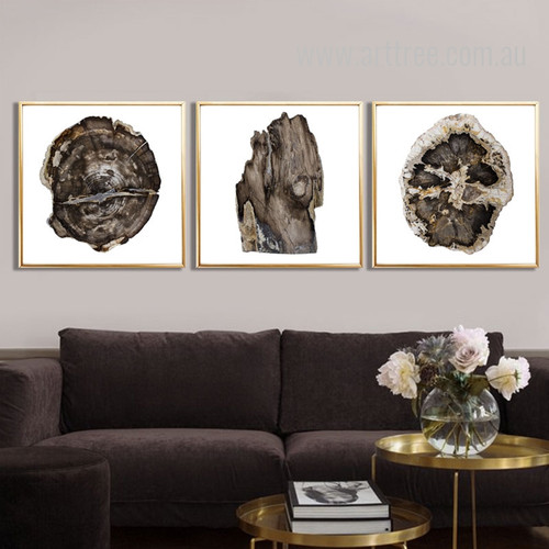 Withered Tree Rings 3 Piece Wall Art Set