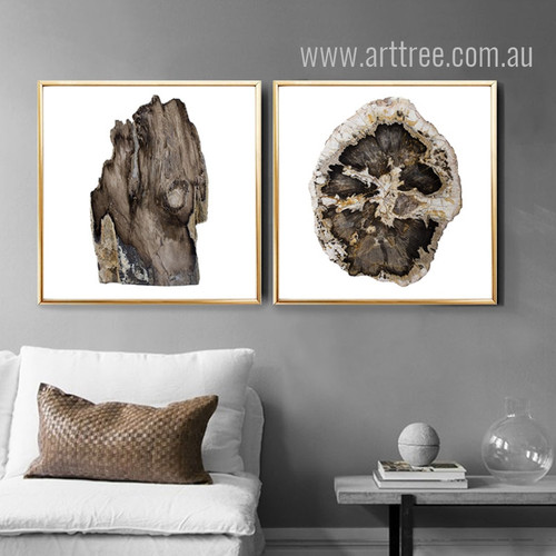 Brown Tree Rings 2 Piece Wall Art Set