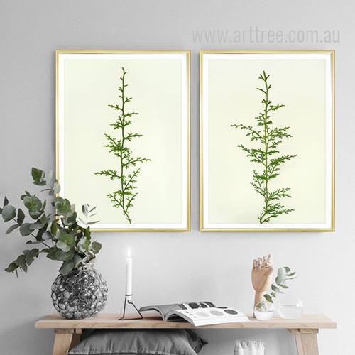 Minimal Green Ferns Plant Life Poster Prints