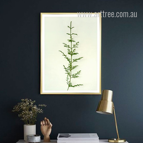 Fern Plant Canvas Print