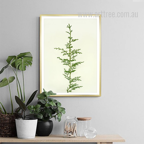 Fern Plant Life Canvas Print