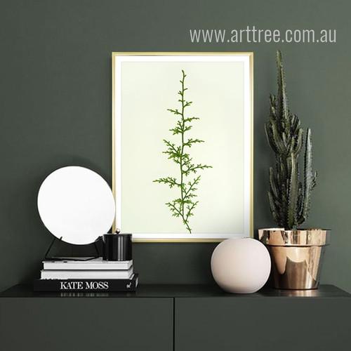 Green Ferns Plant Digital Art
