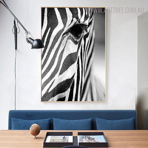 Wild Zebra Animal Wall Art