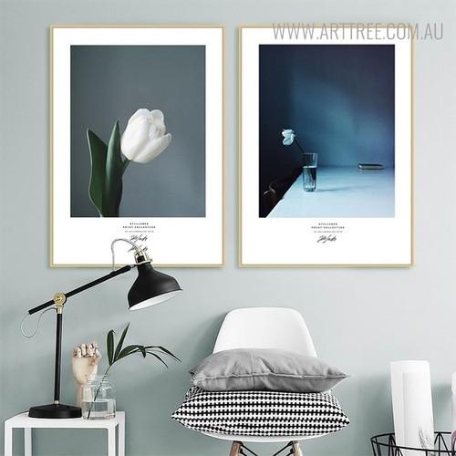 White Tulip Floral Still Life Modern Wall Art Print
