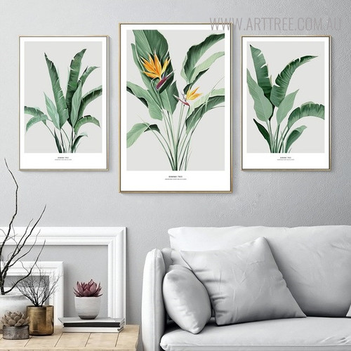 Banana Blossom Floral Modern Painting Canvas Print for Living Room Wall Assortment