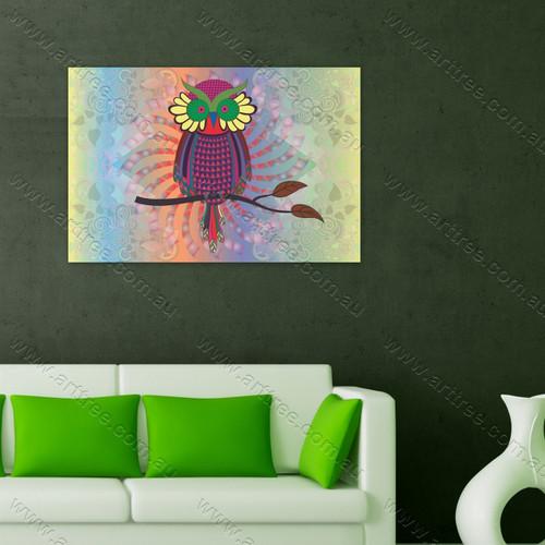 Colorful Owl Bird