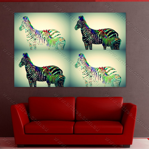 Rainbow Design Zebra
