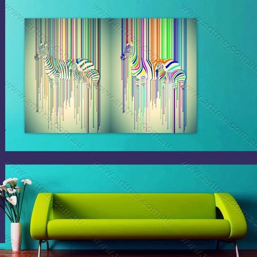Colorful Ray Zebra