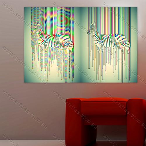 Rays Pattern Zebra