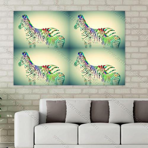 Colorful Baby Zebra