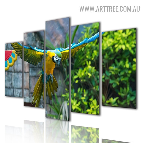 Colourful Parrot Floral Modern 5 Piece Multi Panel Bird Image Canvas Painting Print for Room Wall Outfit