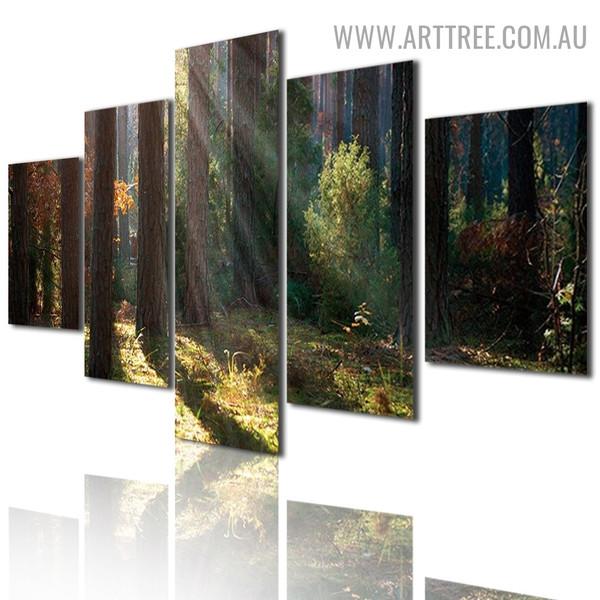 Wild Plants Land Floral Landscape Modern 5 Piece Split Art Image Canvas Print for Room Wall Finery