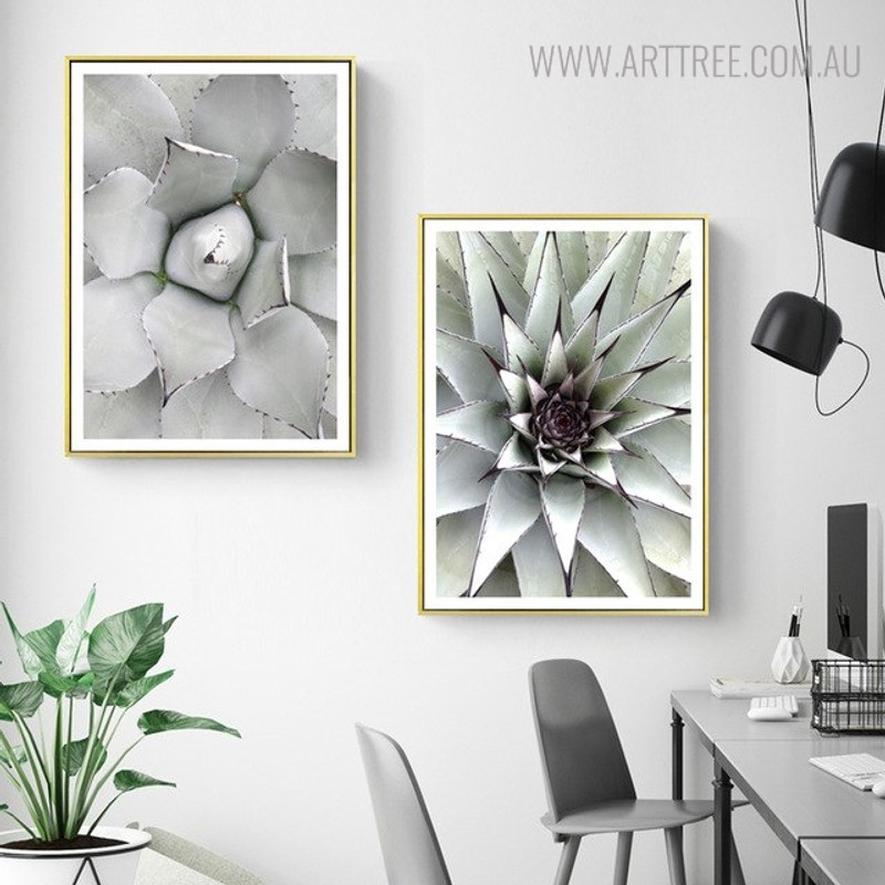 Aloe Vera Botanical Modern Scandinavian Painting Print for Room Wall Equipment