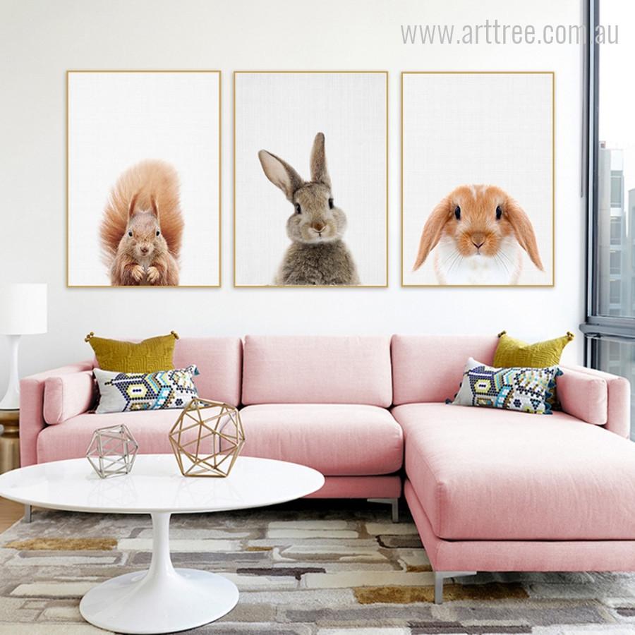 Kawaii Squirrel, Rabbit, Guinea Pig Animal Cute Photo Canvas Print