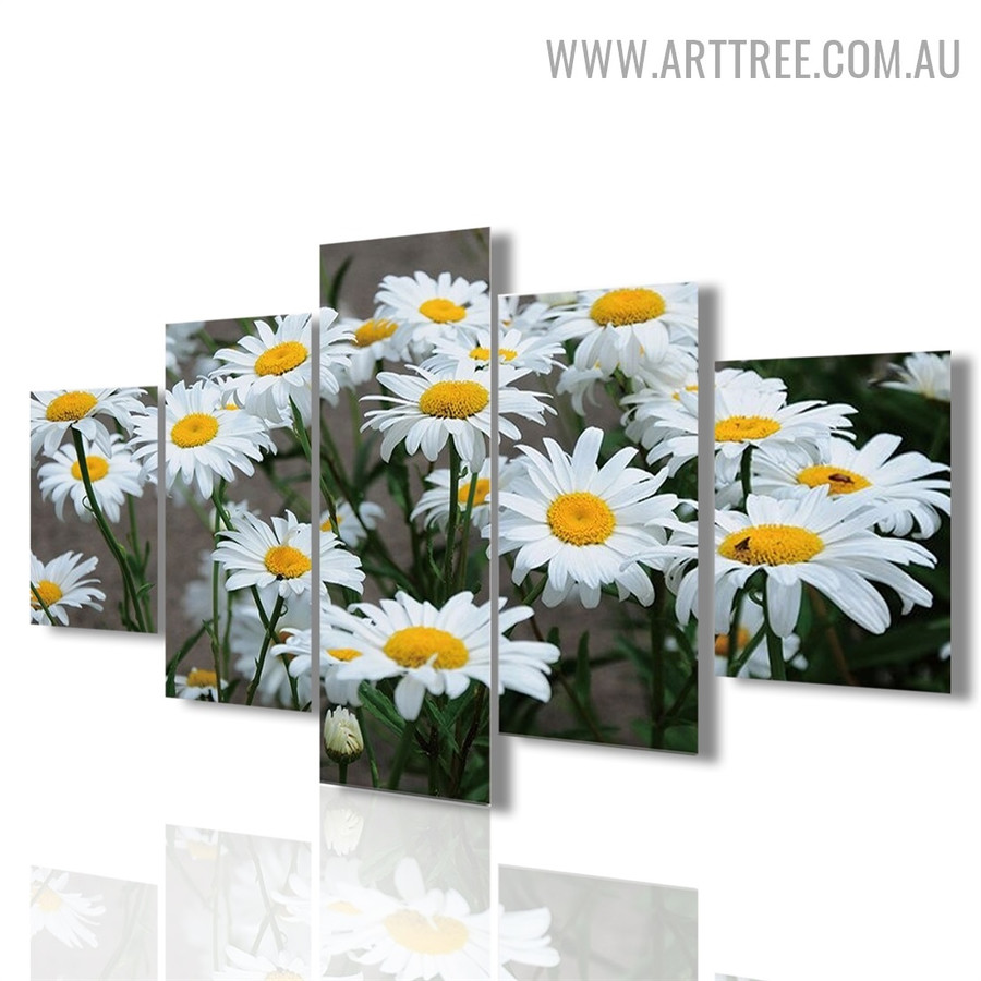 White Sunflowers Modern Floral 5 Piece Over Size Image Canvas Painting Print for Room Wall Trimming