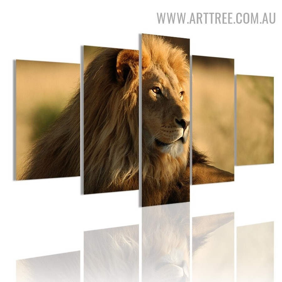Wild Cat Lion Landscape Modern 5 Multi Panel Image Animal Canvas Painting Print for Room Wall Equipment