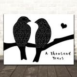 Christina Perri A Thousand Years Lovebirds Black & White Song Lyric Print