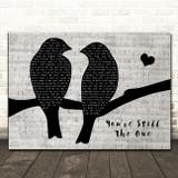 Shania Twain You're Still The One Lovebirds Music Script Song Lyric Art Print