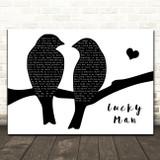 The Verve Lucky Man Lovebirds Black & White Decorative Wall Art Gift Song Lyric Print