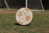 "Engraved Coach's Soccer Plaque, 14"" Birch Wood"
