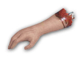 /bloody-arm-body-part/