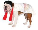 Elvis Presley Pet Costume