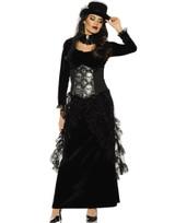 Dark Mistress Womens Adult Costume
