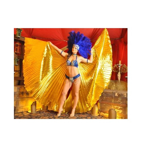 """Isis Wings High Quality Pleated Fabric 57"""" x 93"""" with 2 Rods"""