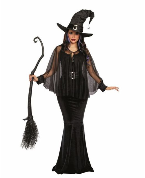 Bewitching Beauty Womens Witch Costume