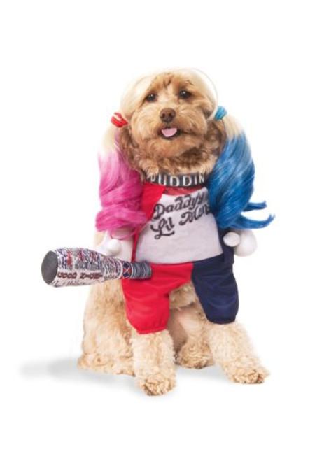 Harley Quinn Dog Costume Licensed Suicide Squad