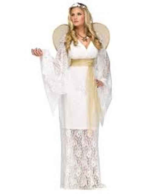 Agelic Maiden Ladies Adult Costume