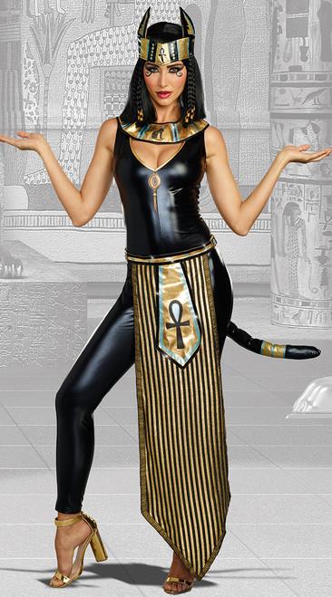 Dreamgirls Kitty Of De Nile Ladies Costume